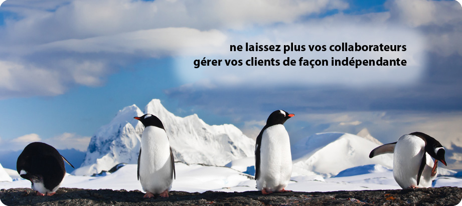 AGILUS CRM vous permet l'intgration d'un logiciel parfaitement adapt  votre mtier, puisqu'il se paramtre totalement selon vos besoins.